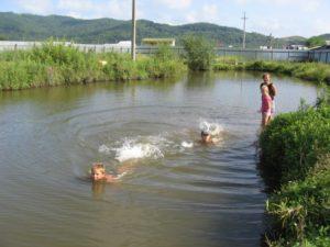 Купание на нашем озере